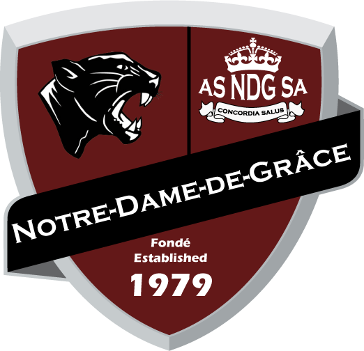 Équipe de soccer NDG Panthers